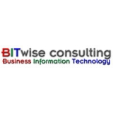 BITwise Consulting