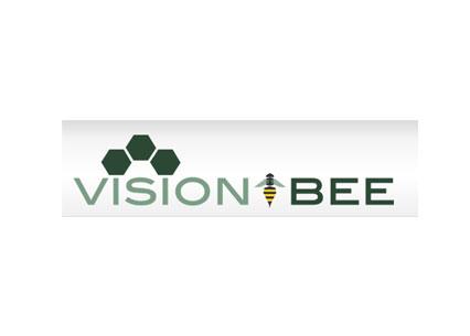 http://www.bigvillageit.com/wp-content/uploads/visionbee.jpg